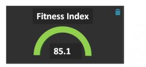 fitnessindex