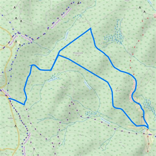 Klassik 10 km Goldbach